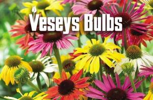 Vesey's Bulbs Spring 2014 Fundraiser